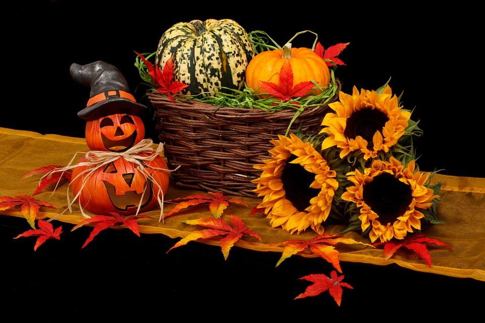 Zucca: simbolo di Halloweem e di Benessere